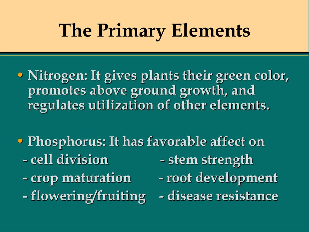 The Primary Elements