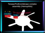 tenase prothrombinase complex assembly hemophilia