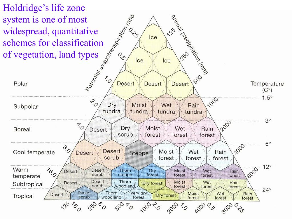 Holdridge's life zone system is one of most widespread, quantitative schemes for classification of vegetation, land types