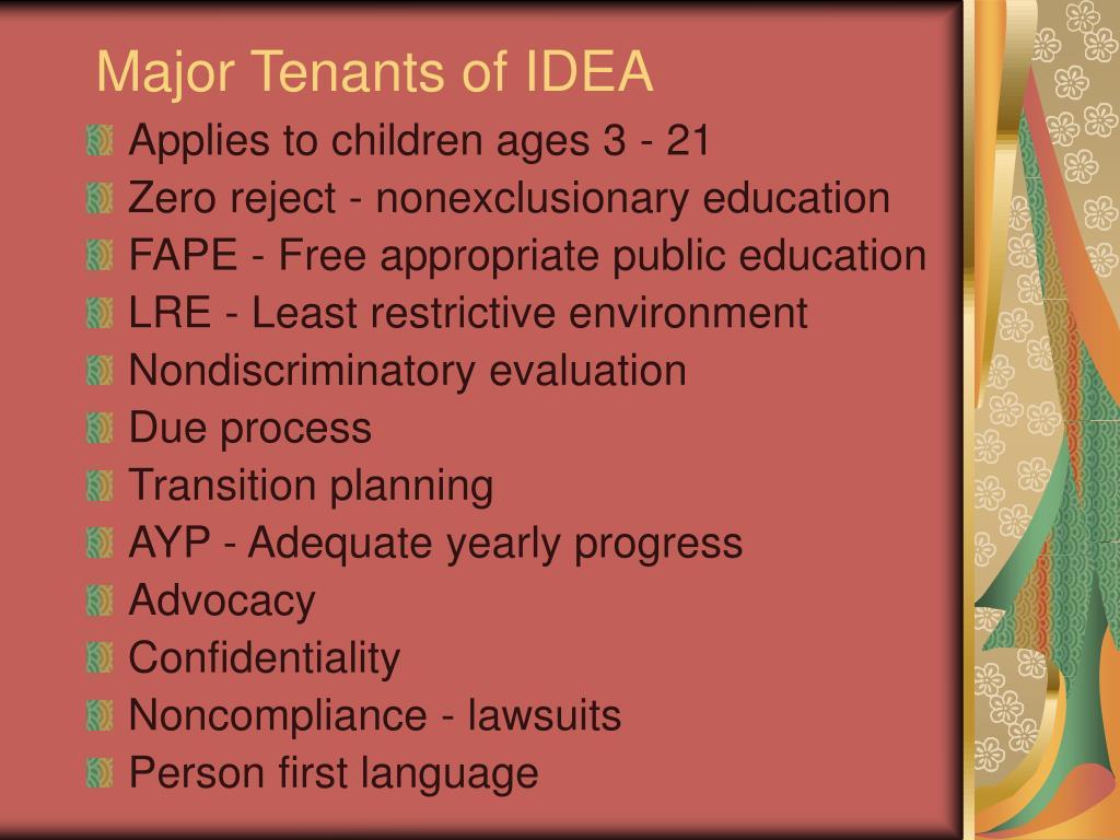 Major Tenants of IDEA