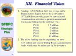 xii financial vision