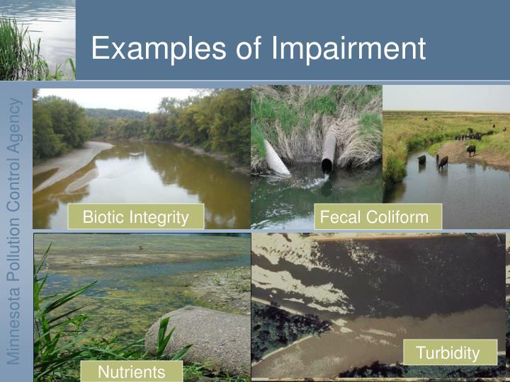 Examples of impairment