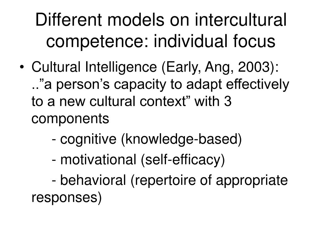 Different models on intercultural competence: individual focus