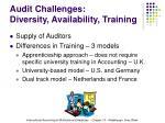audit challenges diversity availability training