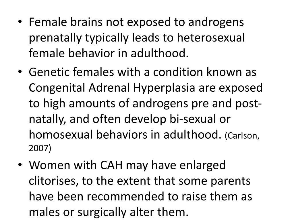 Female brains not exposed to androgens prenatally typically leads to heterosexual female behavior in adulthood.
