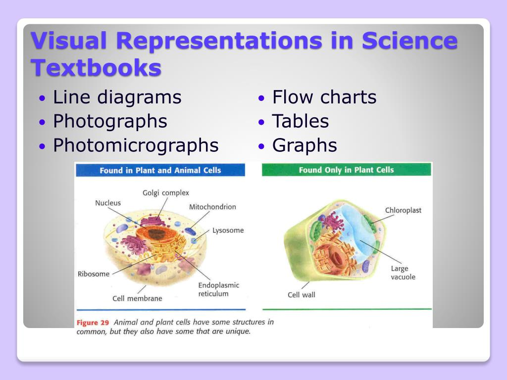 Visual Representations in Science Textbooks