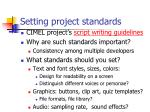 setting project standards
