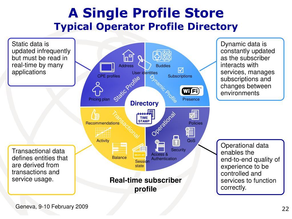 A Single Profile Store
