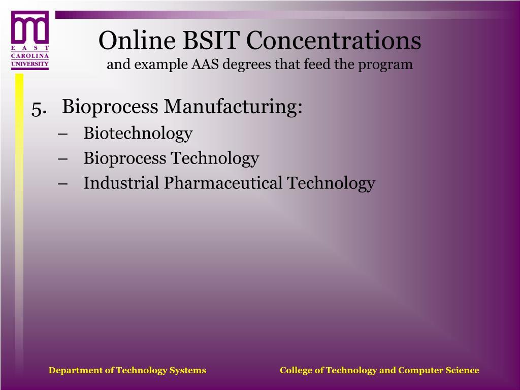 Online BSIT Concentrations