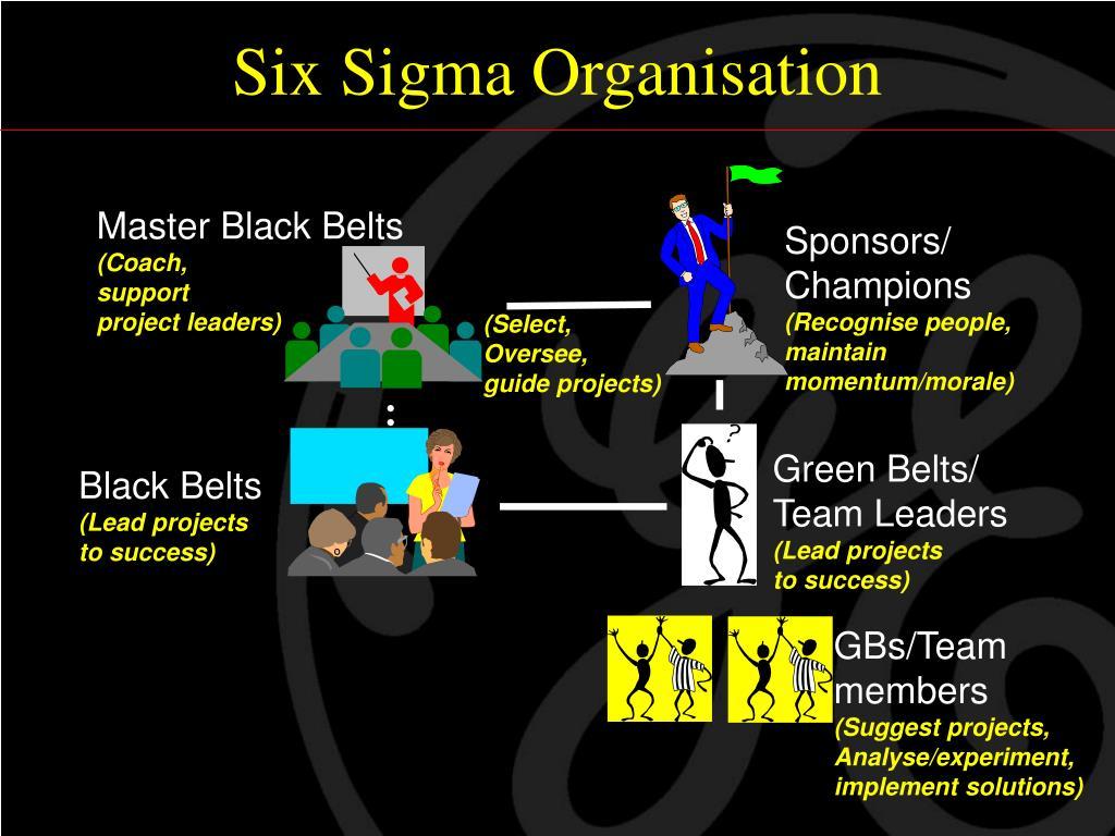 Six Sigma Organisation