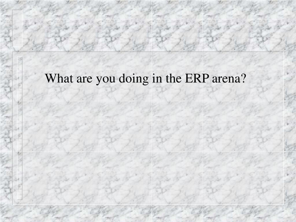 What are you doing in the ERP arena?