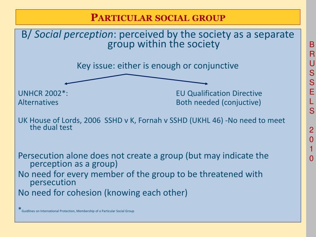 Particular social group