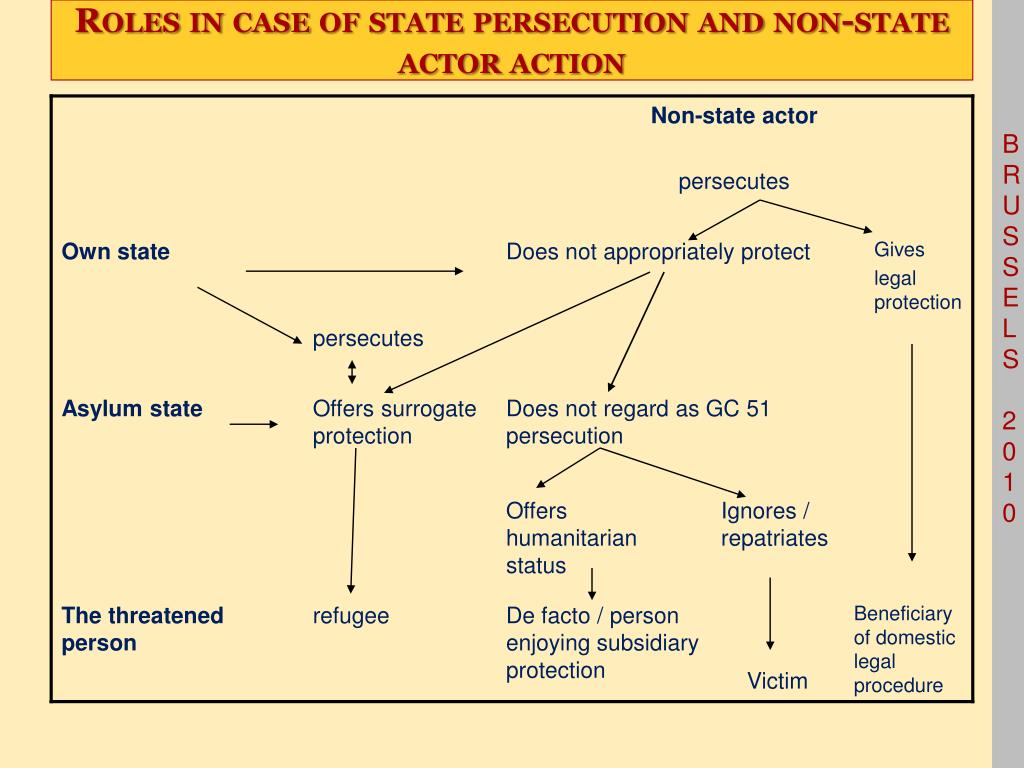 Roles in case of state persecution and non-state actor action