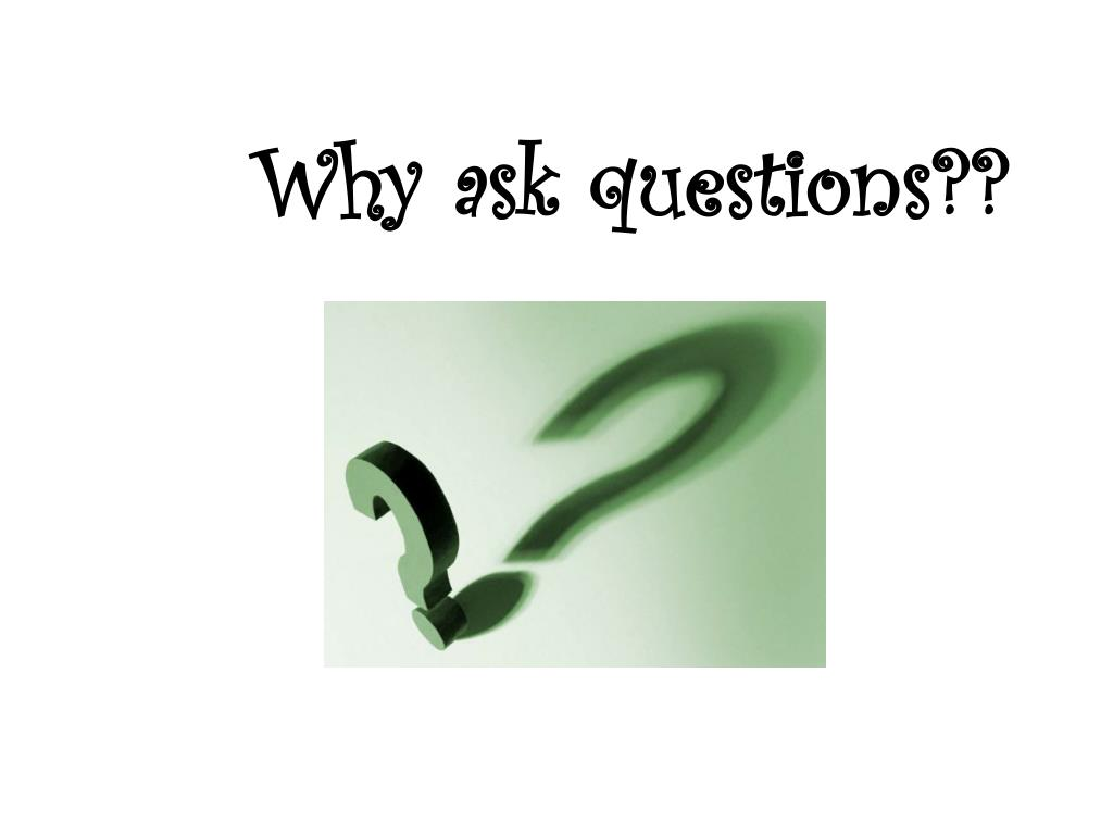 Why ask questions??