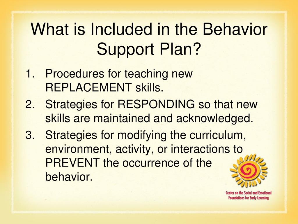 What is Included in the Behavior Support Plan?