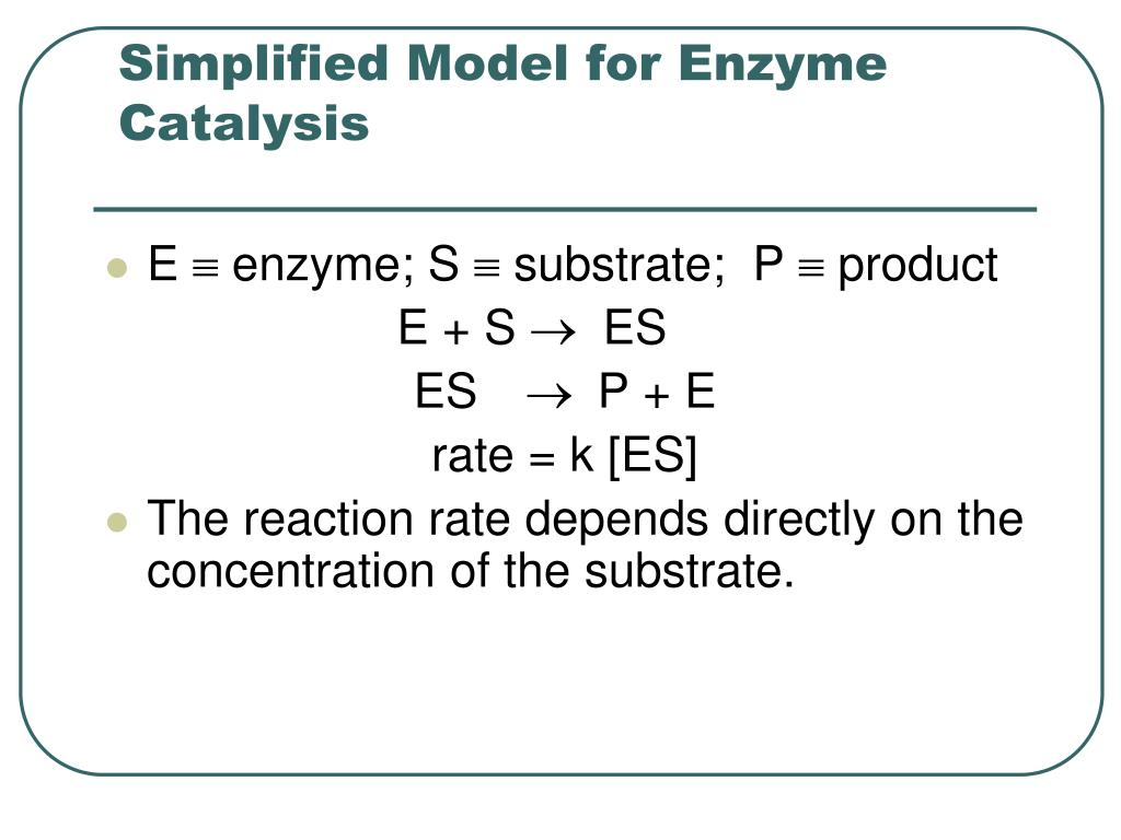 Simplified Model for Enzyme Catalysis