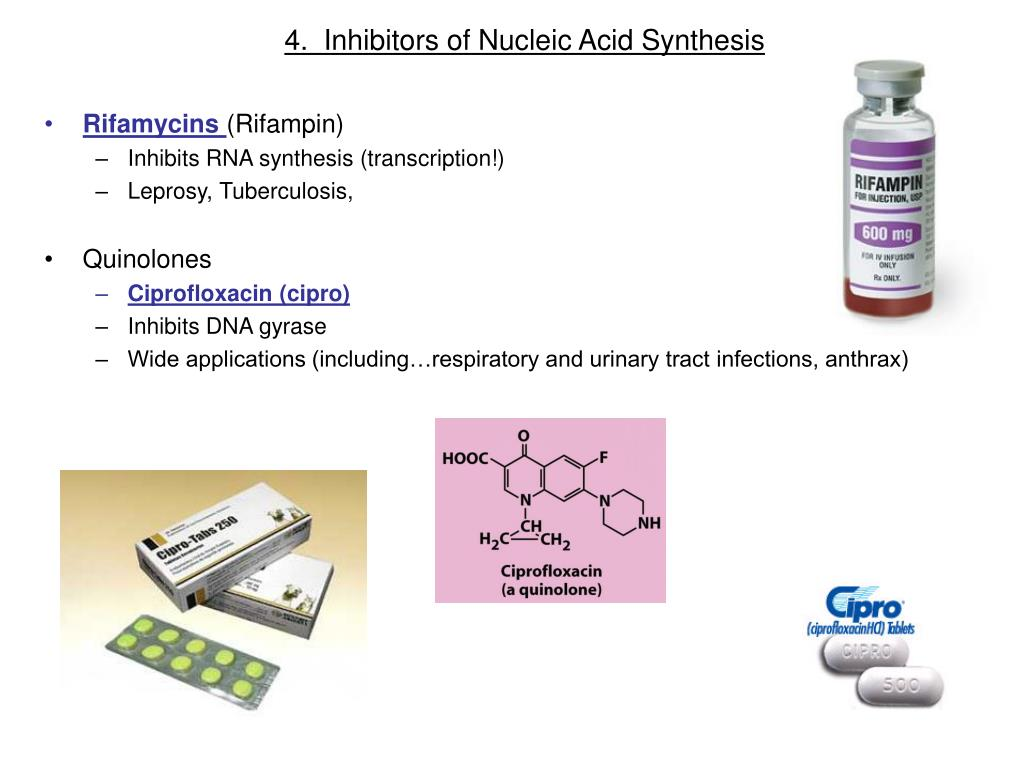 4.  Inhibitors of Nucleic Acid Synthesis