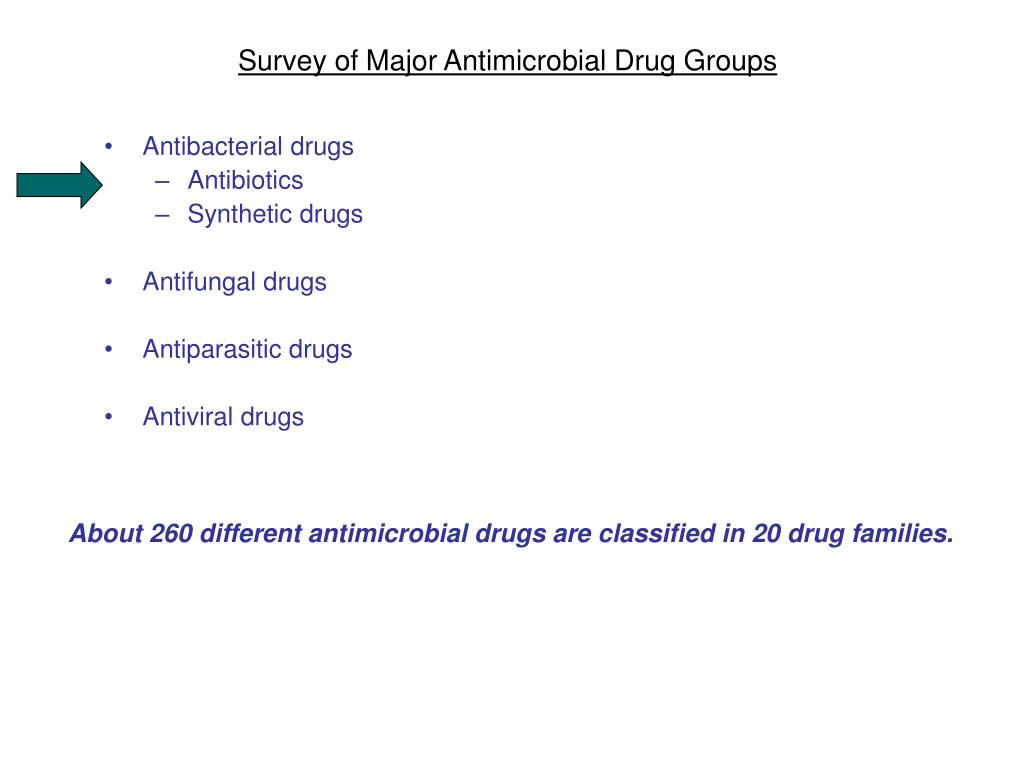 Survey of Major Antimicrobial Drug Groups