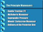 the principle maneuvers