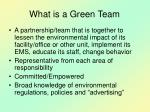what is a green team