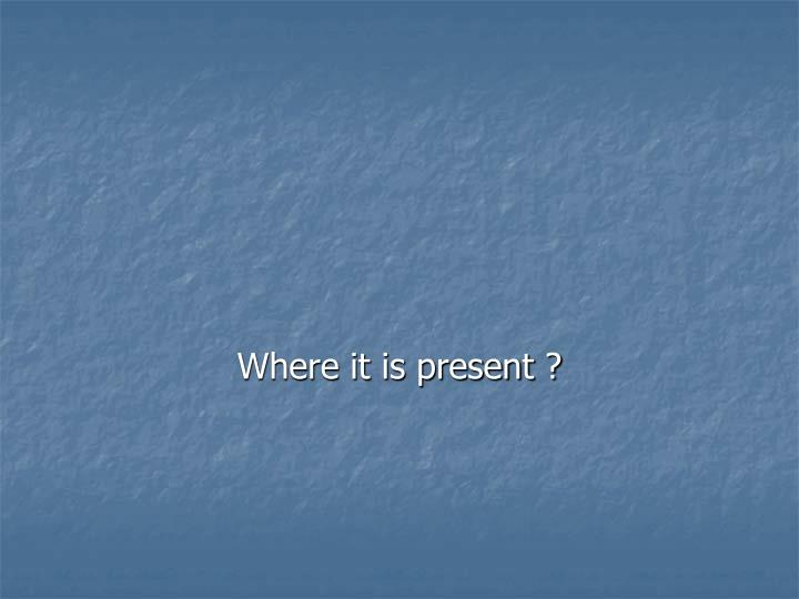 Where it is present ?