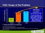 pad scope of the problem