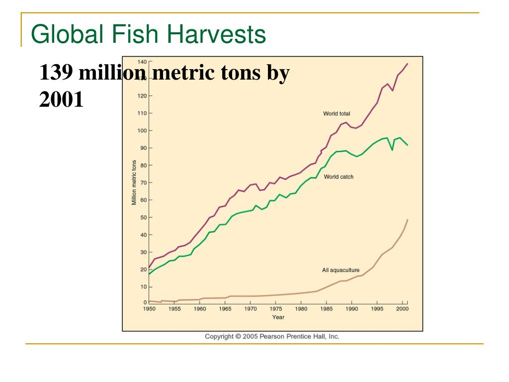 Global Fish Harvests