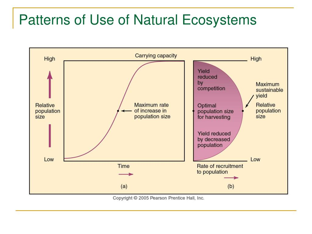 Patterns of Use of Natural Ecosystems