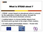 what is stead about