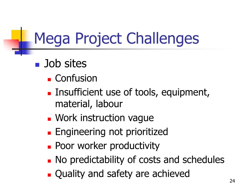 Mega Project Challenges