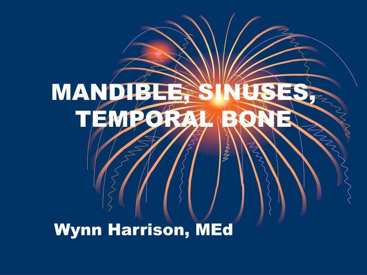 mandible sinuses temporal bone n.