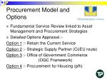 procurement model and options