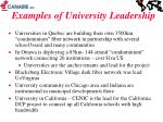examples of university leadership