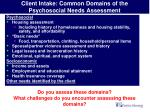 client intake common domains of the psychosocial needs assessment26