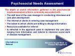 psychosocial needs assessment