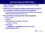 set your record audit policy