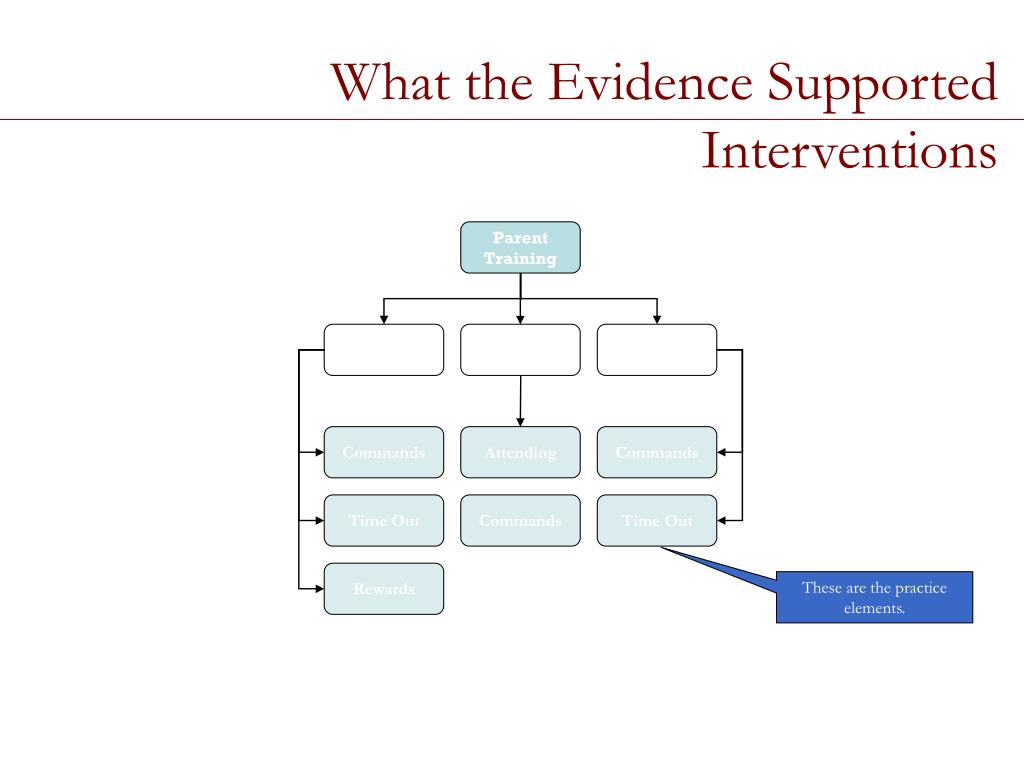 What the Evidence Supported Interventions