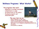 wellness programs what works