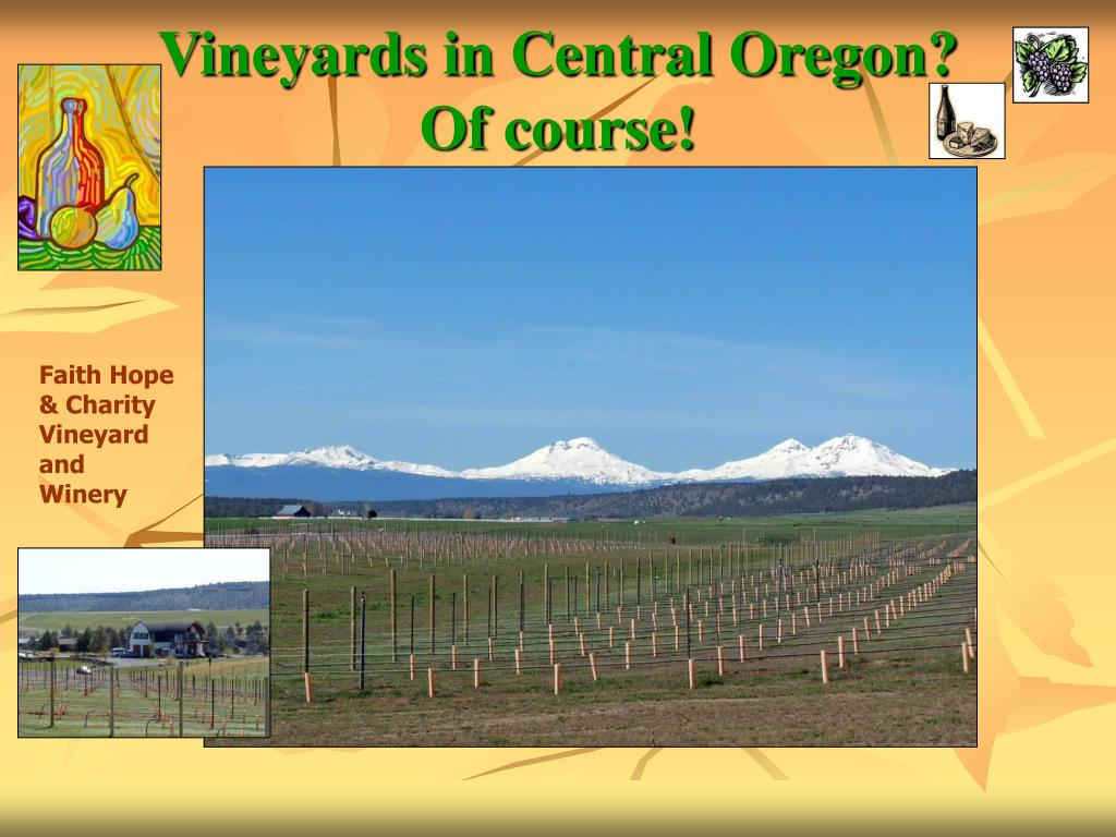 vineyards in central oregon of course l.