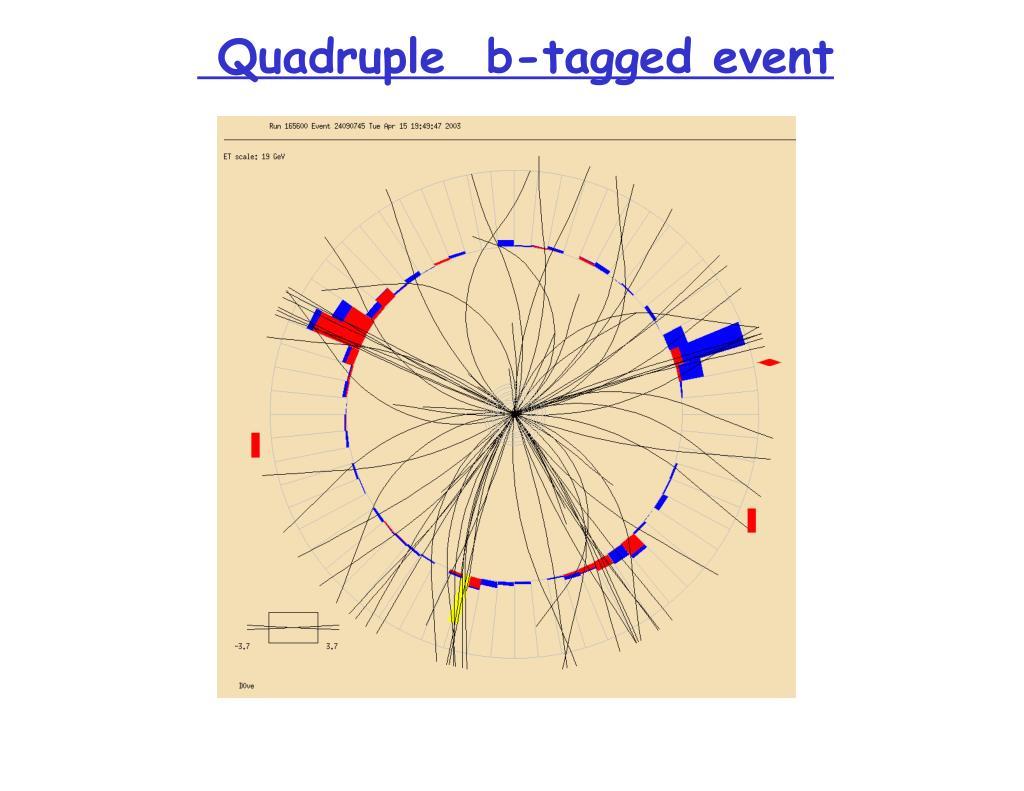 Quadruple  b-tagged event