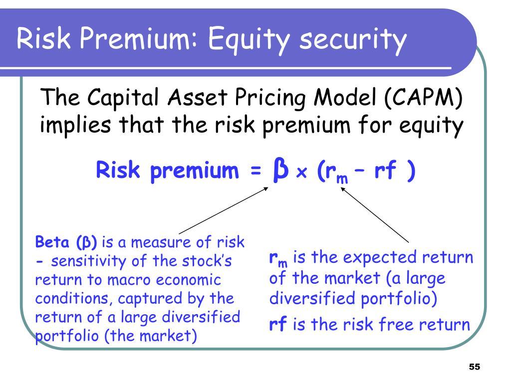 Risk Premium: Equity security
