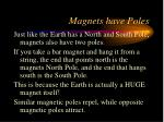 magnets have poles