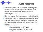 audio receptors