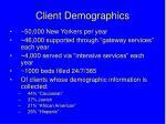 client demographics