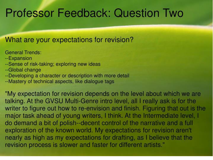 Professor feedback question two