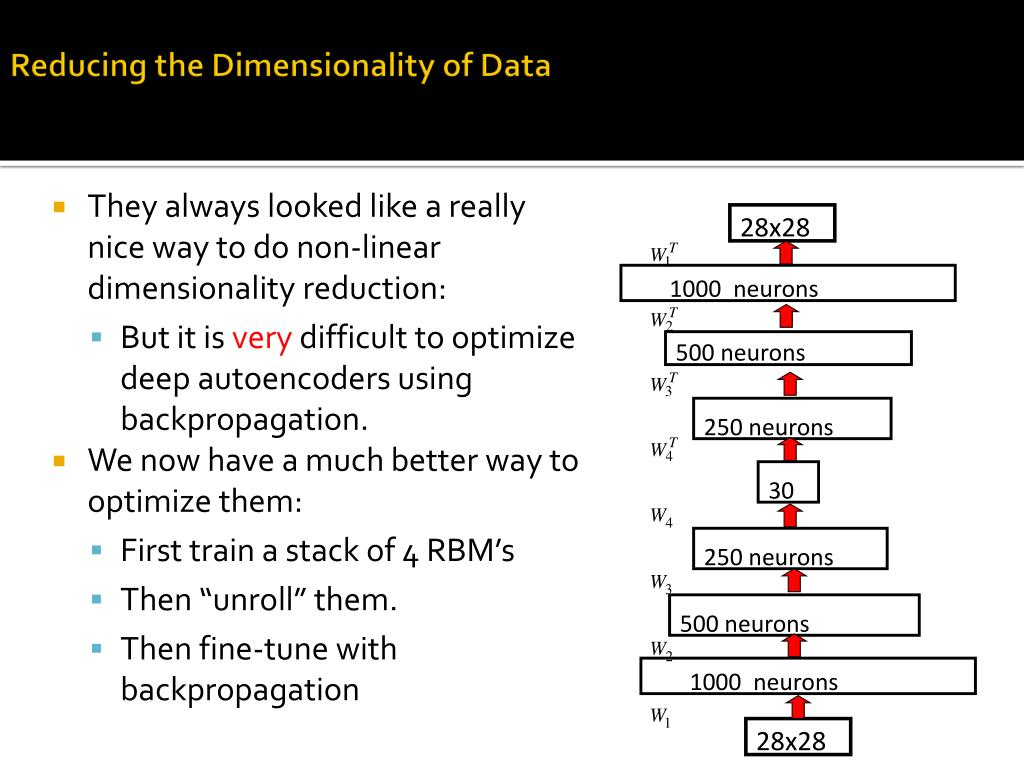 Reducing the Dimensionality of Data