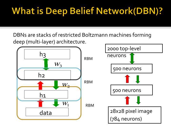 What is deep belief network dbn