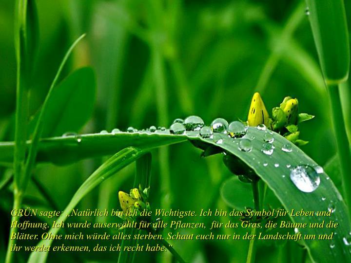 """GRÜN sagte: """"Natürlich bin ich die Wichtigste. Ich bin das Symbol für Leben und Hoffnung. Ich w..."""
