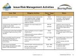 issue risk management activities