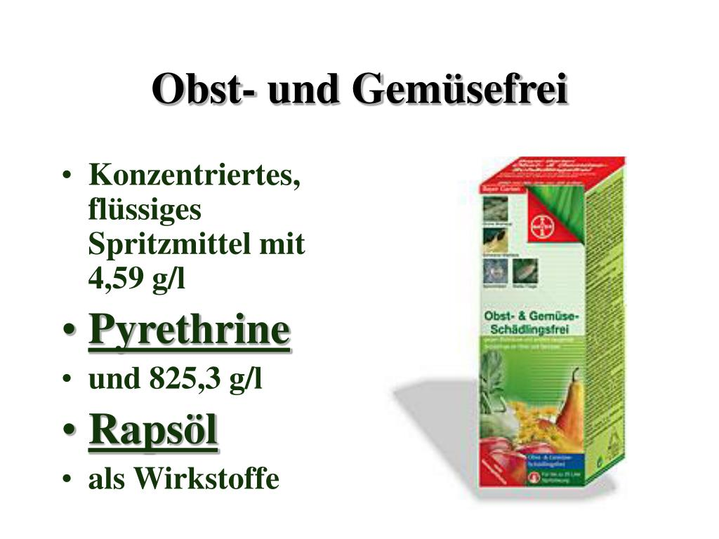 Obst- und Gemüsefrei